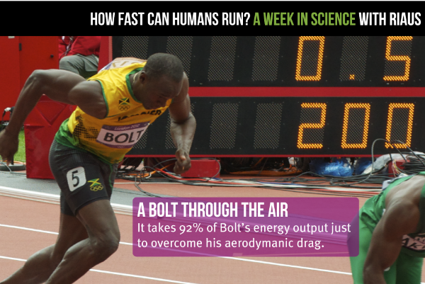 WATCH: How Fast Can Humans Run?